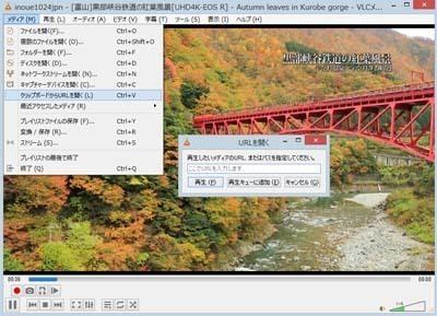 VLC Media Player_0403_s.jpg