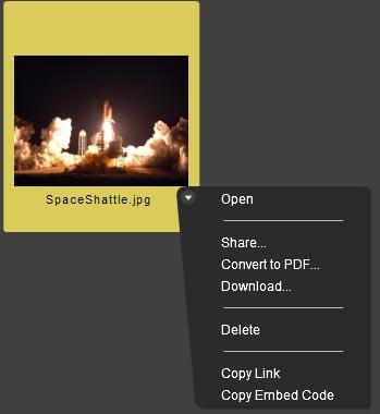 AdobeMyFilesMenu.jpg