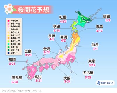 桜開花予想2021年.png