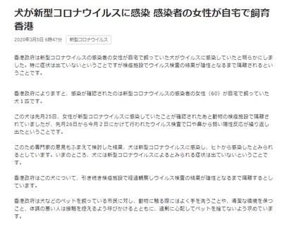 武漢肺炎_犬が新型コロナウイルスに感染 香港_NHKニュース_s.jpg