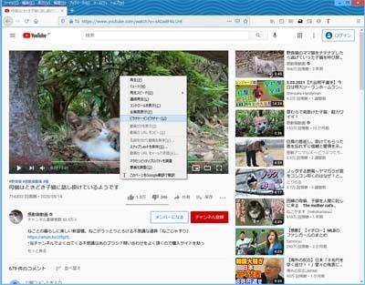 Firefox86ピクチャーインピクチャー_106_s.jpg