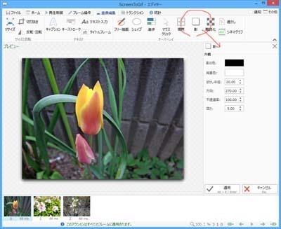 ScreenToGif_0702_s.jpg