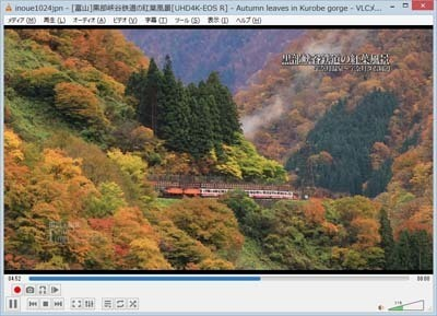VLC Media Player_0402_s.jpg